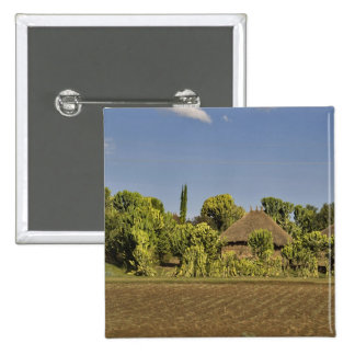 A farmed field in front of thatched roof houses button