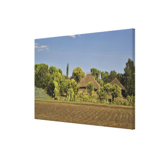 A farmed field in front of thatched roof houses canvas print