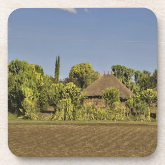 A farmed field in front of thatched roof houses coaster