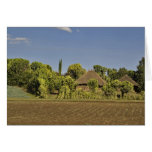 A farmed field in front of thatched roof houses greeting card