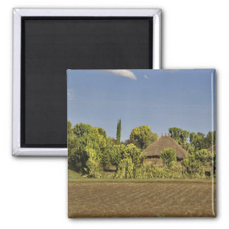 A farmed field in front of thatched roof houses magnet