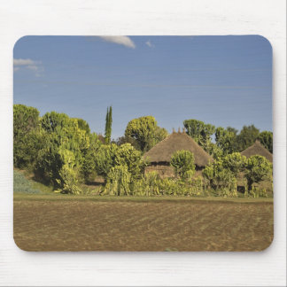 A farmed field in front of thatched roof houses mouse pads