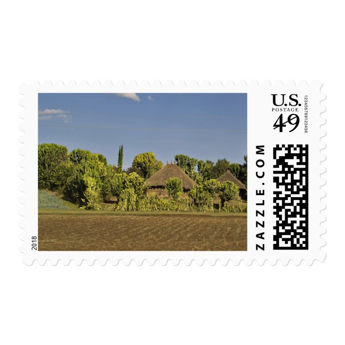A farmed field in front of thatched roof houses postage stamp