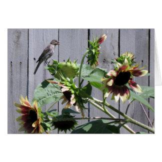 A Feast of Sunflower Seeds Card