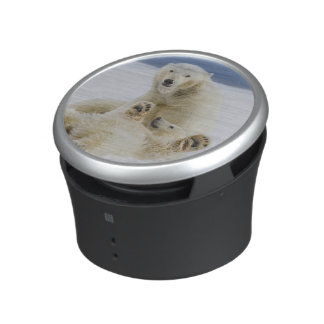 A female polar bear and her cub play in the snow bluetooth speaker