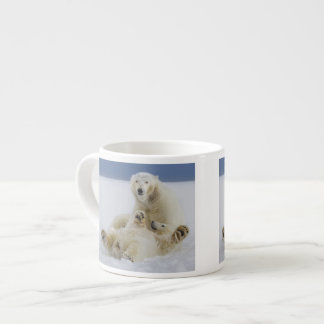 A female polar bear and her cub play in the snow espresso cup