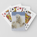 A female polar bear and her cub play in the snow playing cards