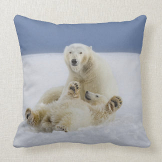 A female polar bear and her cub play in the snow pillows