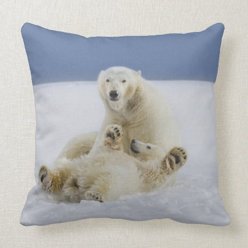 A female polar bear and her cub play in the snow pillows