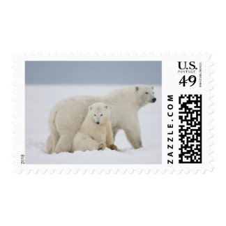 A female polar bear and two cubs sit together stamp