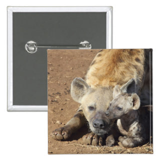 A female Spotted Hyena and her cub, Kruger Button