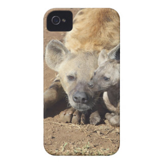 A female Spotted Hyena and her cub, Kruger iPhone 4 Case-Mate Case