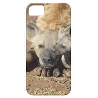 A female Spotted Hyena and her cub, Kruger iPhone SE/5/5s Case