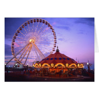 A ferris wheel and carousel at the Navy Pier in Card