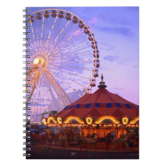 A ferris wheel and carousel at the Navy Pier in Notebook