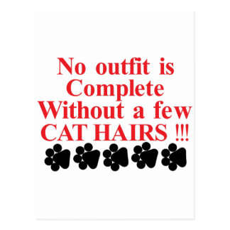 A Few Cat Hairs Postcard