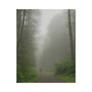A Few Steps into the Mist Canvas Print