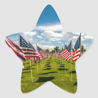A field of American Flags on V-day Remembrance Star Sticker