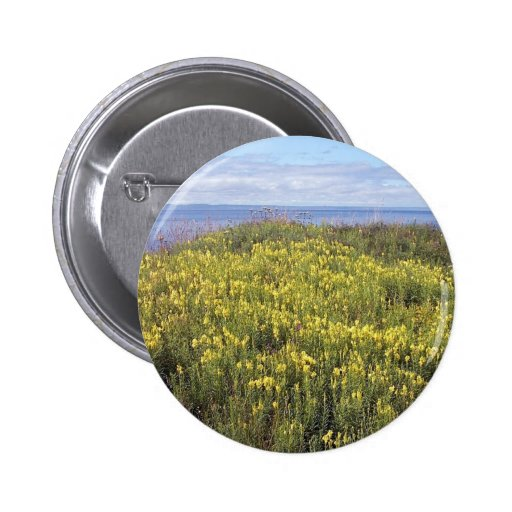 A Field Of Butter And Eggs Button