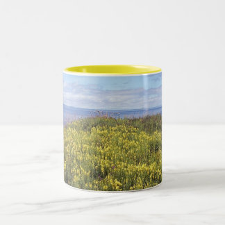 A Field Of Butter And Eggs Mug