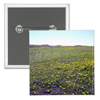 A Field Of Dandelions Button