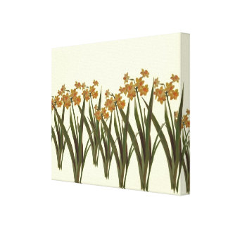 A Field of Golden Jonquils Canvas Print