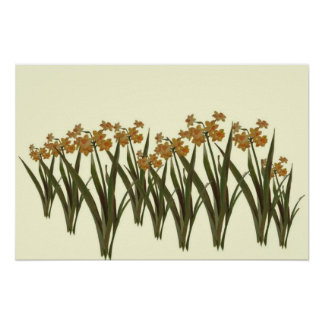 A Field of Golden Jonquils Poster