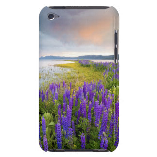 A field of Lupine wildflowers on the North Shore iPod Touch Cover
