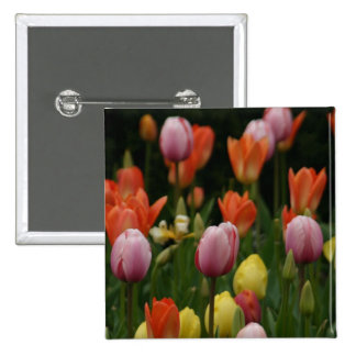 A field of peonies, cyclamens and tulips flowers pin