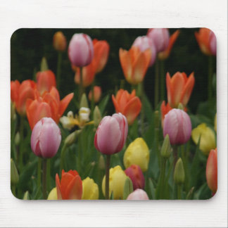 A field of peonies, cyclamens and tulips flowers mouse pad