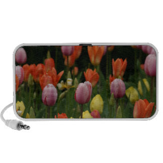 A field of peonies cyclamens and tulips flowers mini speakers