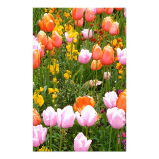 A field of tulips in Amsterdam Stationery