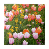 A field of tulips in Amsterdam Tile