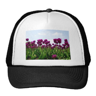 A Field of Violet Tulips Mesh Hat