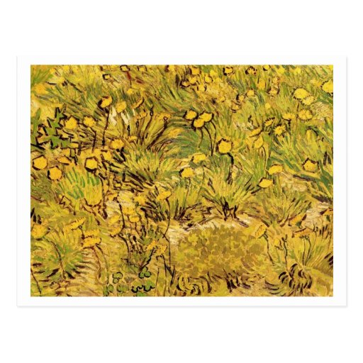 A Field of Yellow Flowers, Vincent van Gogh Postcard