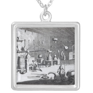 A first view of Practical Chemistry Silver Plated Necklace
