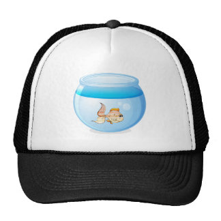 a fish and a bowl trucker hat