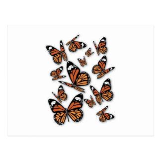 A Flight of Butterflies Postcard
