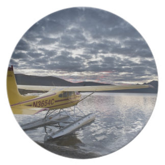 A floatplane in scenic Takahula Lake 2 Dinner Plate