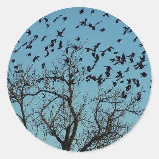 a Flock of birds Classic Round Sticker