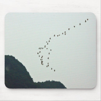 A flock of birds from Yangtze Mouse Pad