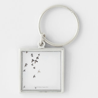 A flock of birds is flying at the sky key chains