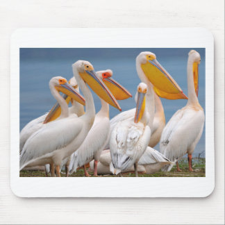 A Flock Of Pelicans Mouse Pad
