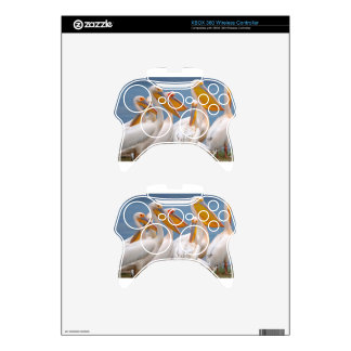 A Flock Of Pelicans Xbox 360 Controller Skin