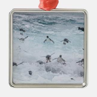 A flock of Rockhopper penguins launch out of the Metal Ornament