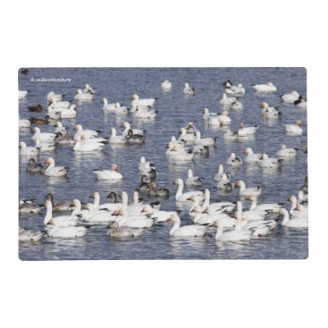 A Flock of Snow Geese at the Beach Placemat