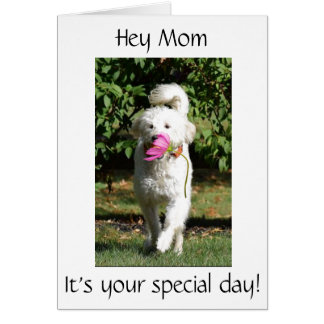 A FLOWER AND SPECIAL WISH FOR ***MOM*** ON HER DAY CARD