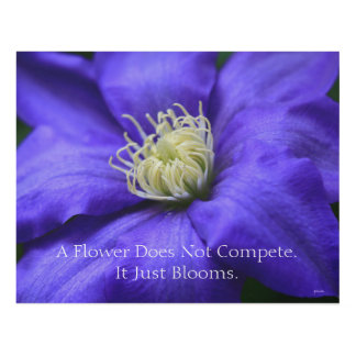 A Flower Does Not Compete Quote Panel Wall Art