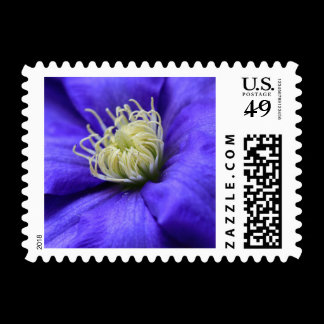 A Flower Does Not Compete Quote Postage