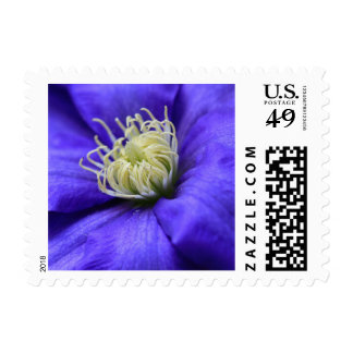 A Flower Does Not Compete Quote Postage Stamp